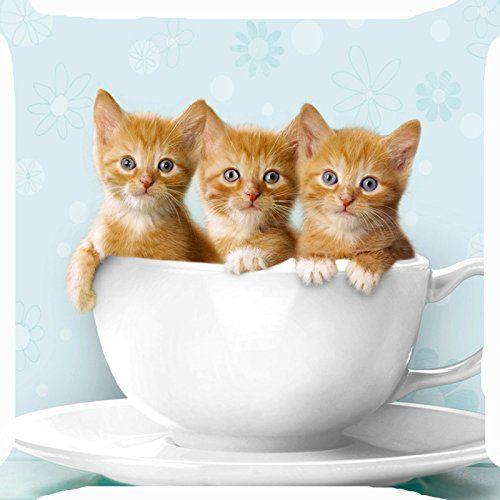 Cushion cover throw pillow case 18 inch cat kitten friend... https://www.amazon.com/dp/B00XKLDE0O/ref=cm_sw_r_pi_dp_x_D3b6ybHSH2B3Q