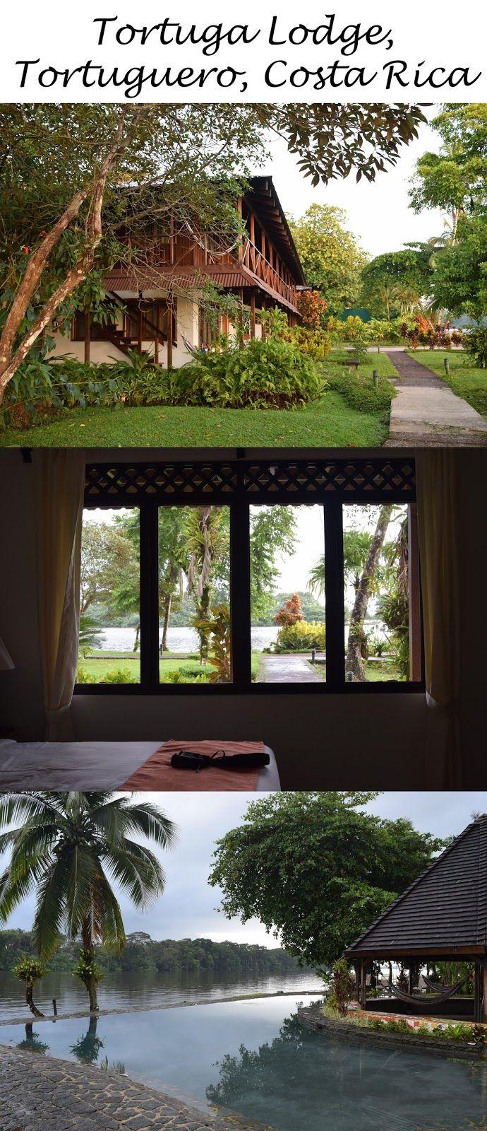 1006816337da0f9e2b83a230288dddc6 - Tortuga Lodge And Gardens Costa Rica