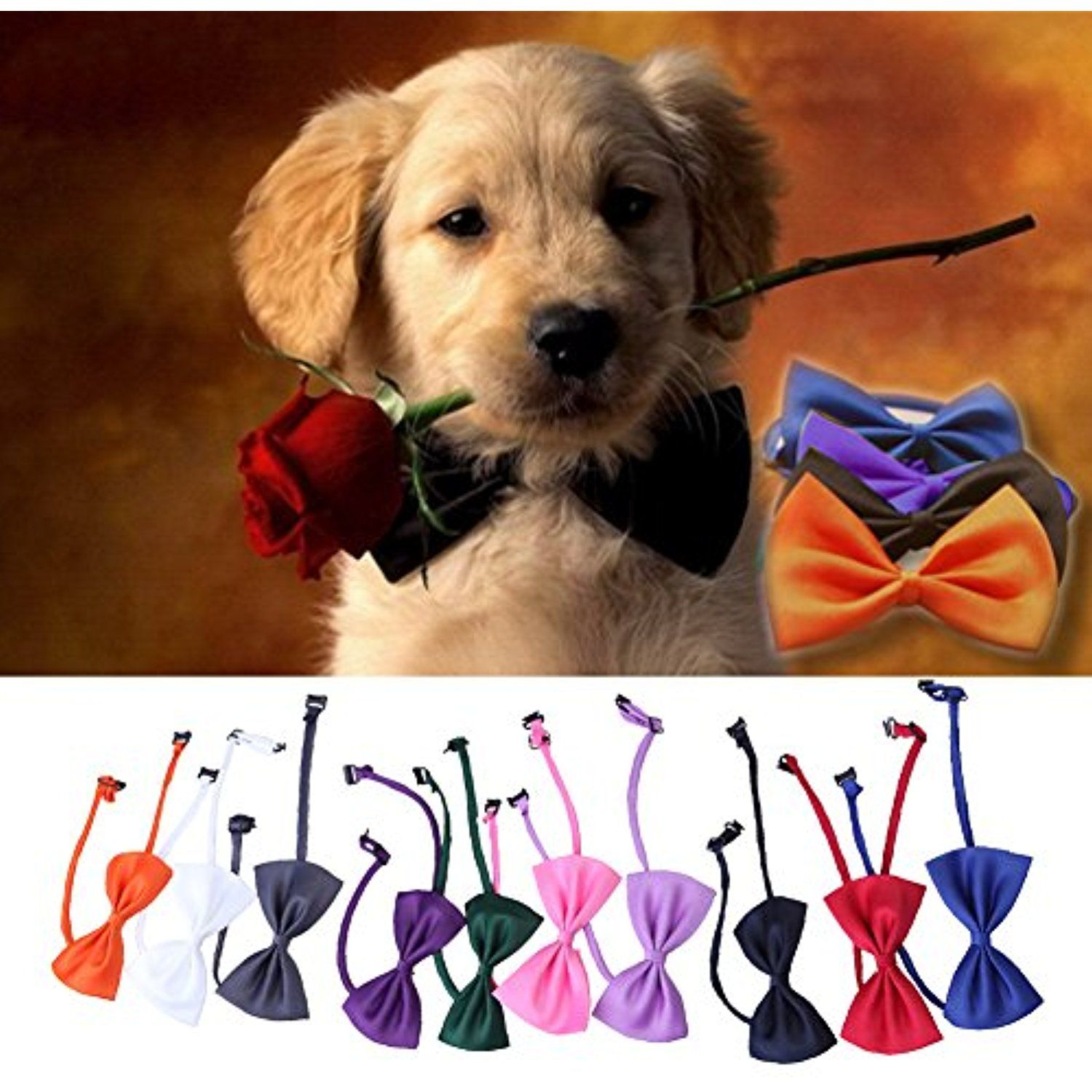 Simple Collar Bow Adorable Dog - 100702230edc68a6abb8a2619cfbf46e  Graphic_308557  .jpg