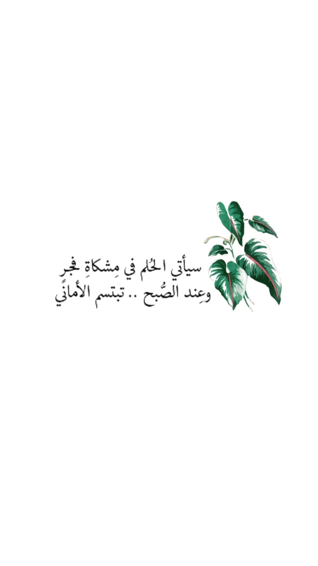 اقتباسات الفجر الصباح Wisdom Quotes Life Short Quotes Love Quote Symbol