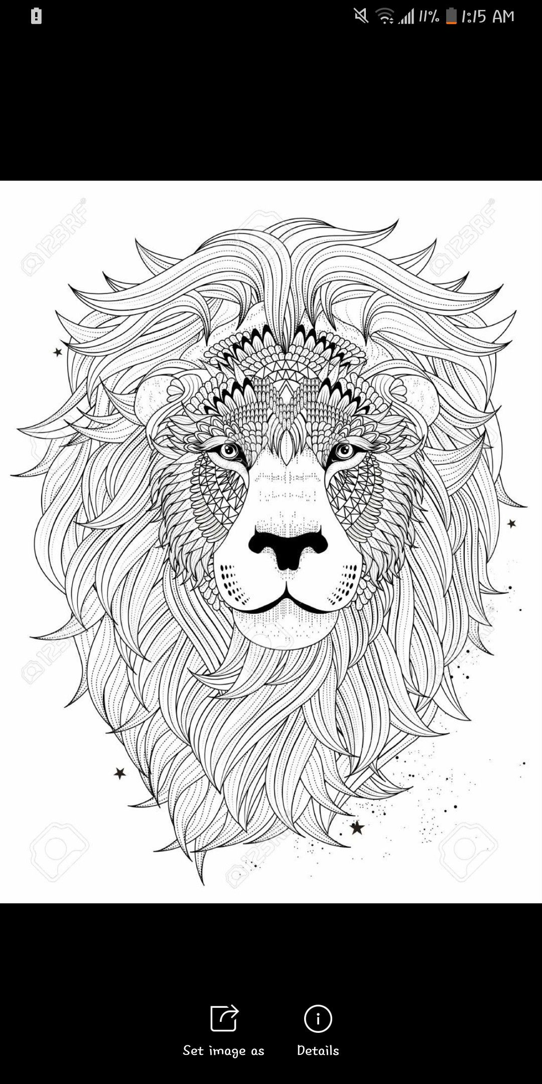 Lion face | Lion coloring pages, Abstract lion, Adult ...