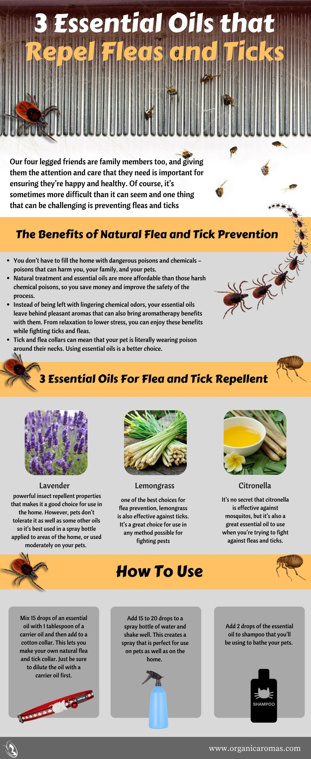3 Essential Oils That Repel Fleas And Ticks Essential Oils For