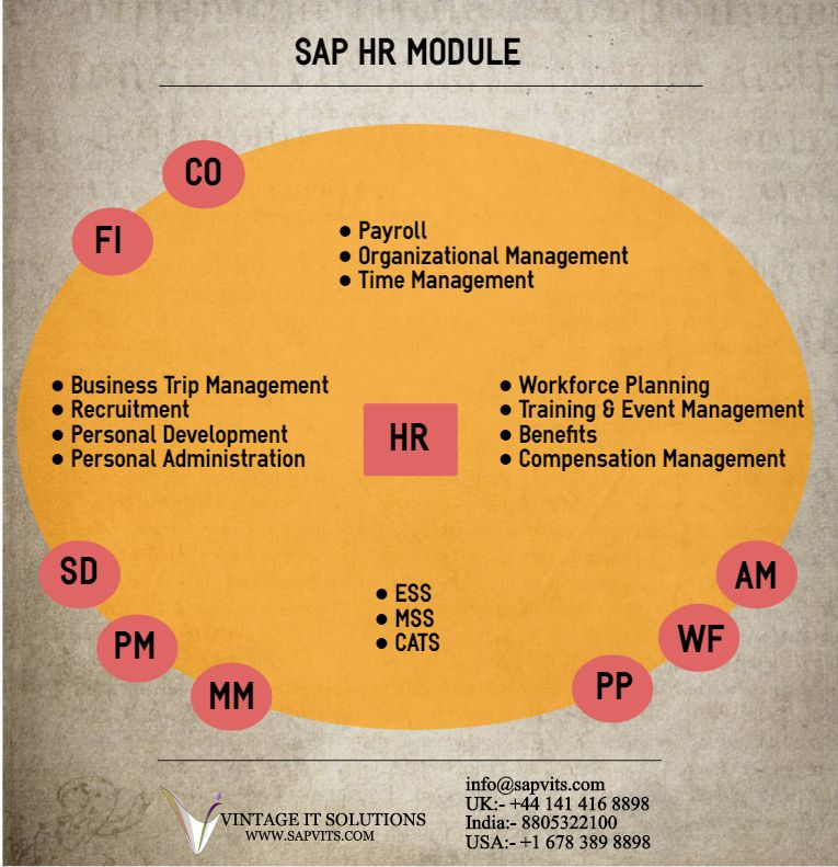 Sap Human Resource Management Module Manages All Functions From