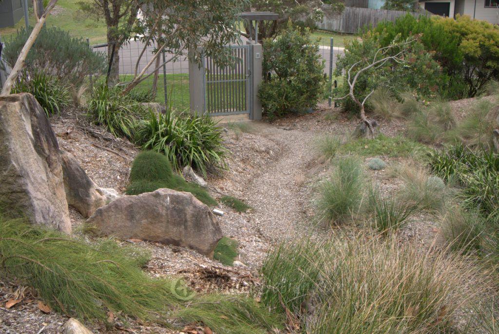 Portfolio bundeena garden design revisit mallee design for Australian native garden layout