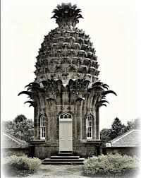Image result for the pineapple house
