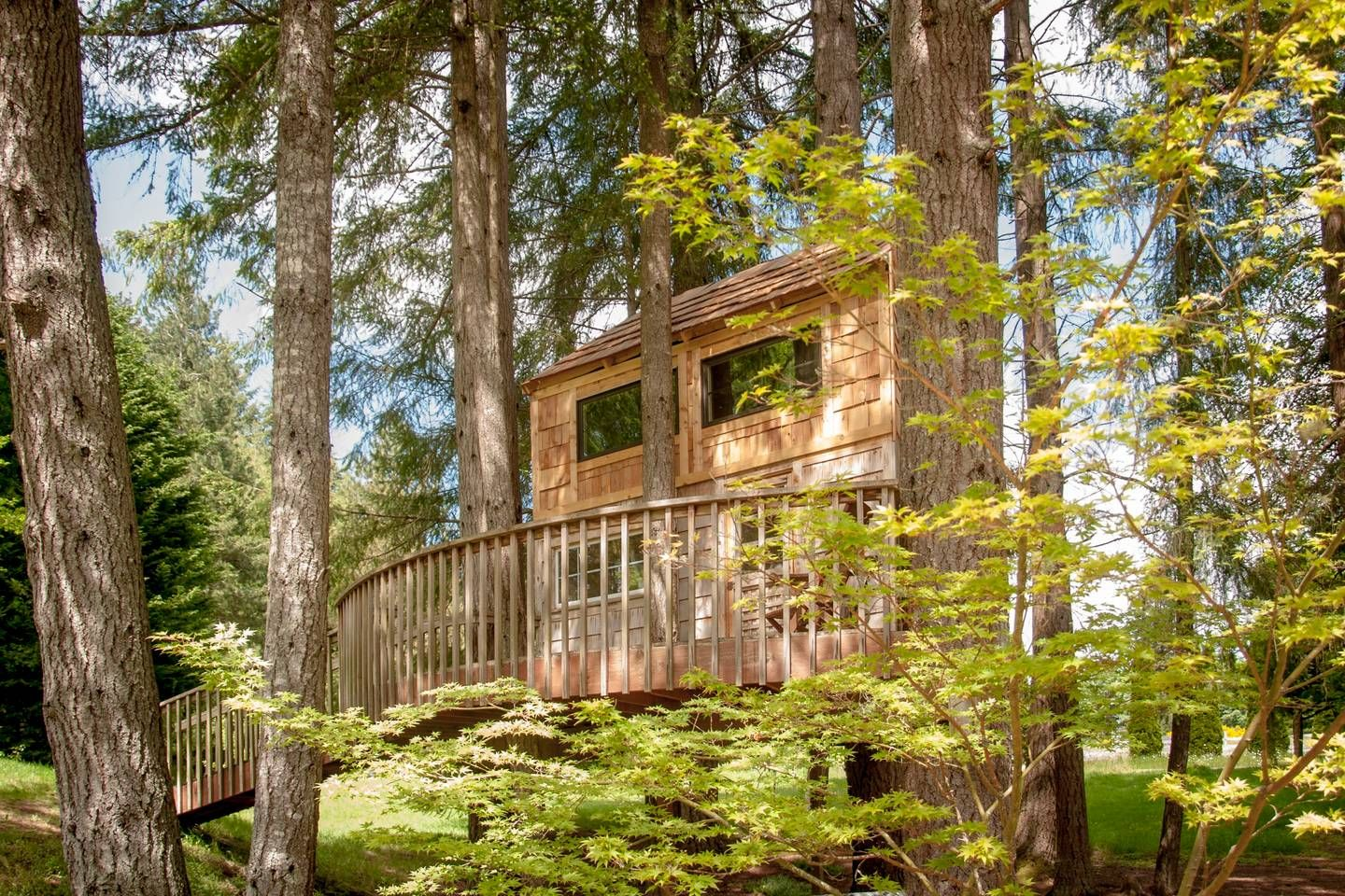 Meadowhawk Sanctuary Treehouse Bed and breakfasts for