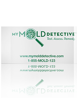 Mold testing products my mold detective is a fast affordable and mold testing products my mold detective is a fast affordable and reliable do it yourself mold test kit that helps you find toxic allergens easily and solutioingenieria Image collections