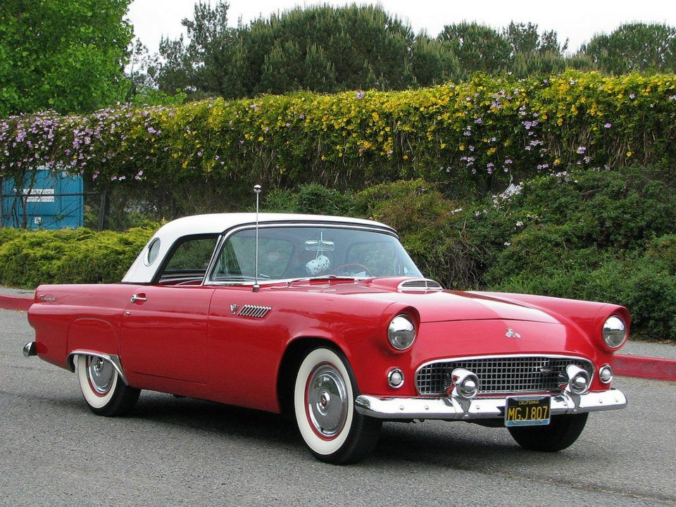55 ford thunderbird just pretty pinterest ford thunderbird rh pinterest com