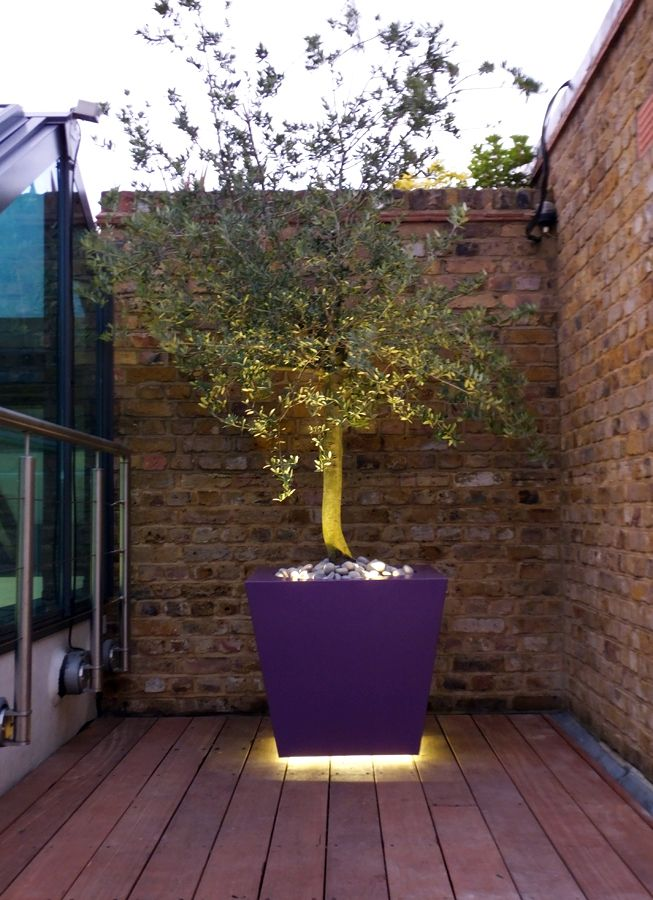 recessed led lighting under tree planter in a roof garden rh pinterest com