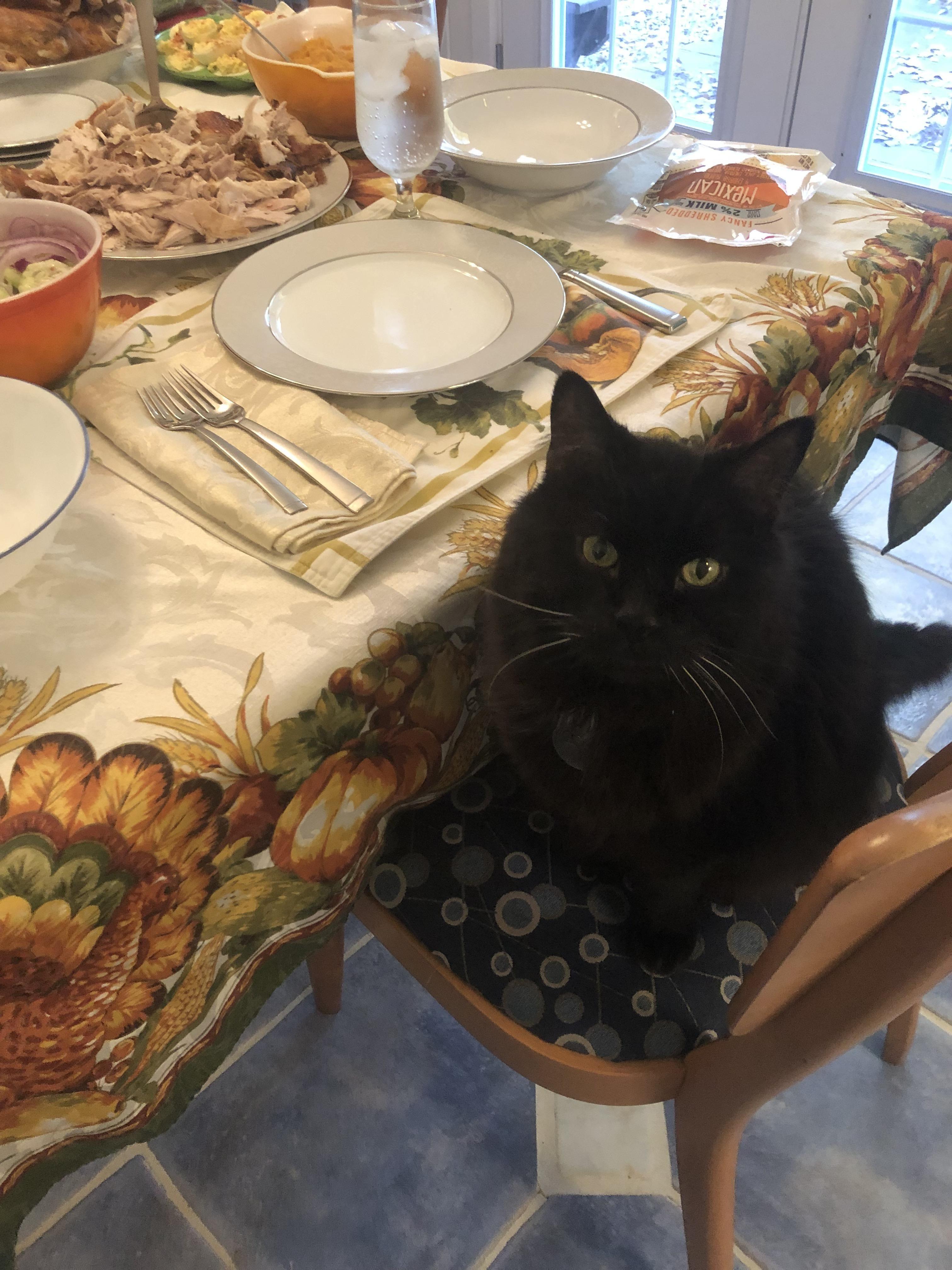 After Thanksgiving Dinner Meme