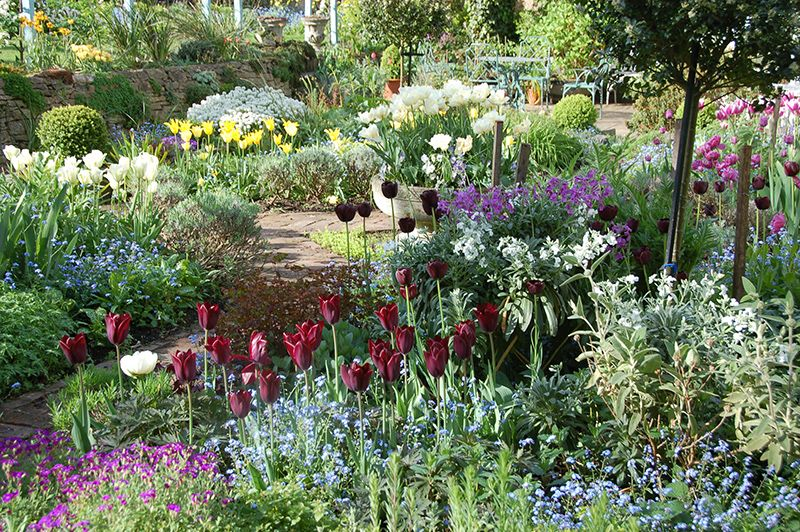 Secret Garden: Shepherd House - Scotland's Gardens