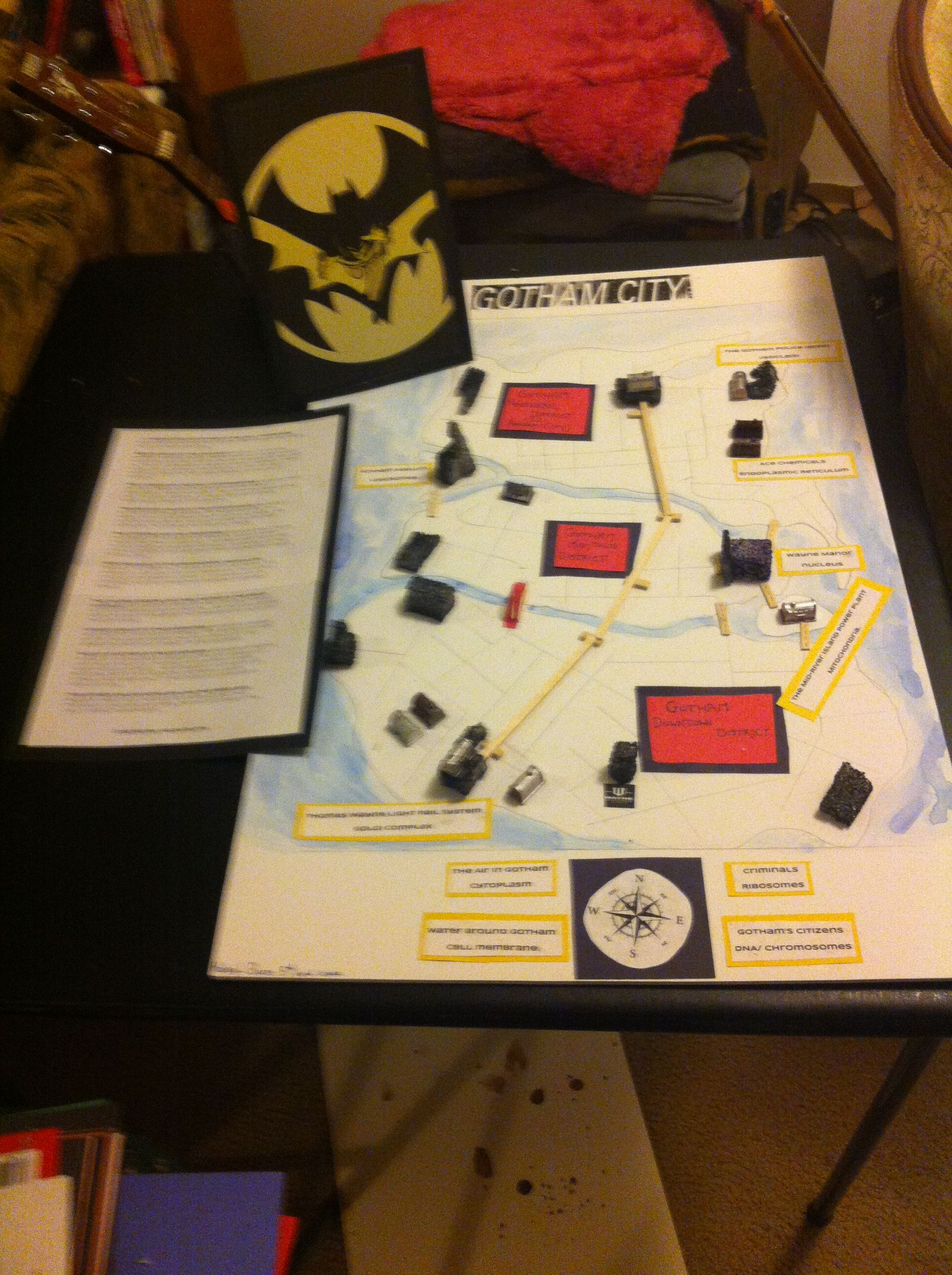 Gotham City As Cell Analogy Project It Got An A Haley