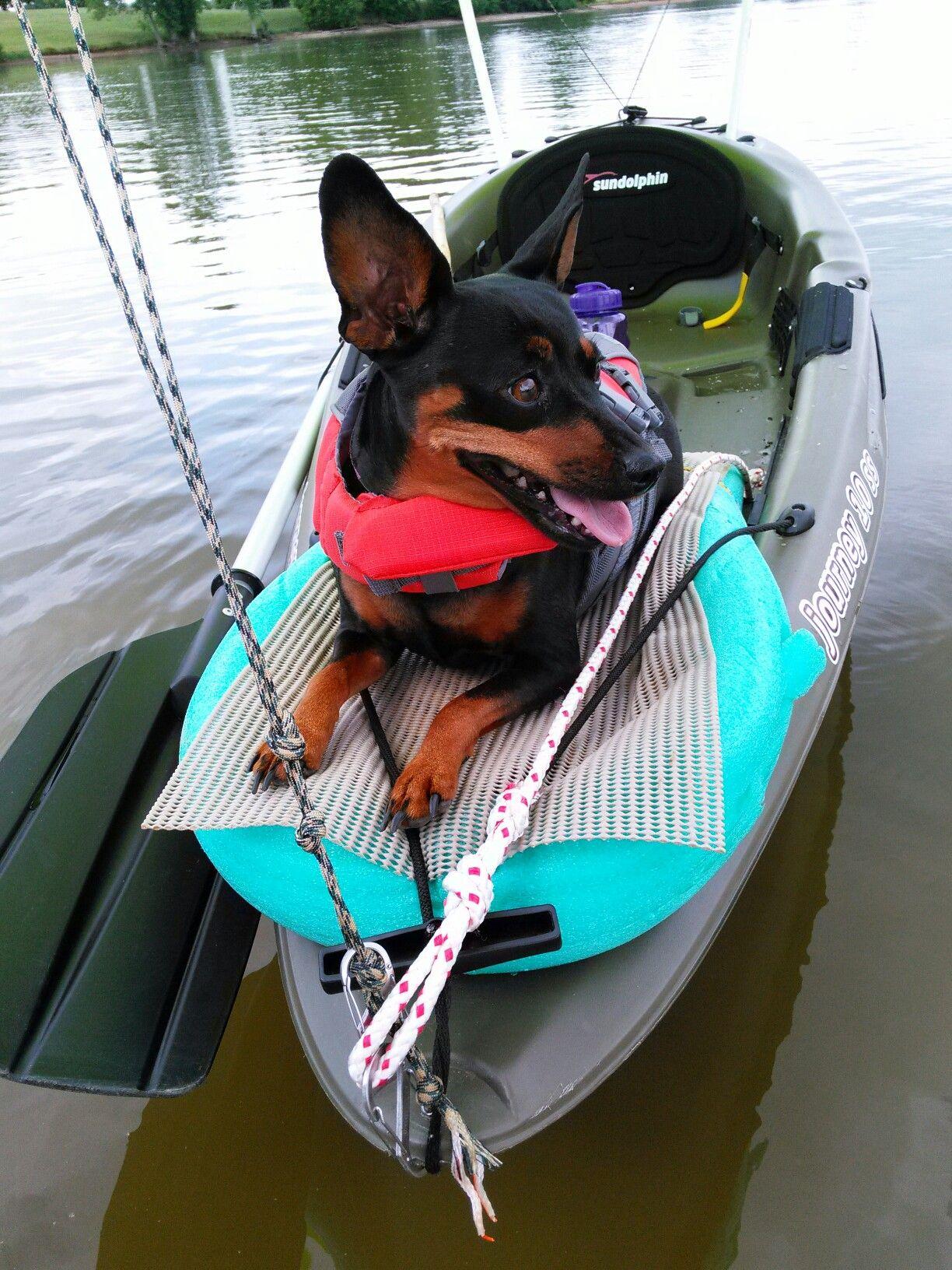 The Basics Of Fishing At Night Kayak Camping Kayak Accessories