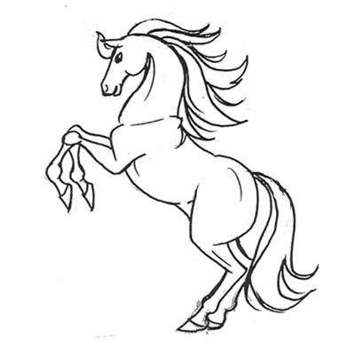 تعلم رسم حصان تعلم الرسم ببساطة تعلم الرسم تعلم الرسم للمبتدئين تعلم الرسم بقلم الرصاص تعلم الرسم للأطفال تعلم الرسم خطوة Drawings Art Drawings Art