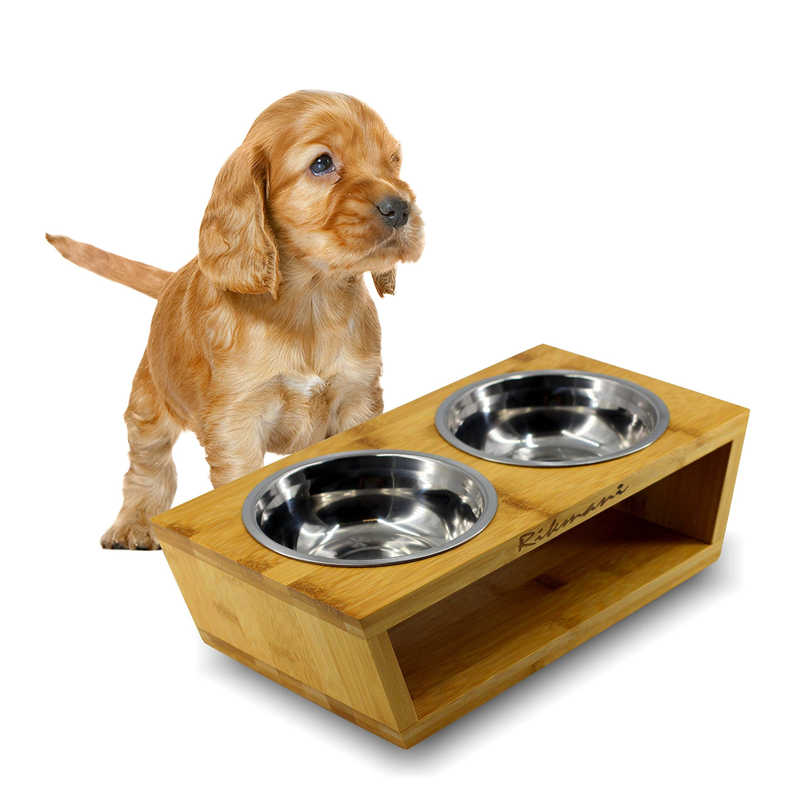 Raised Dog Bowls Elevated Double Bowl Feeding Station For Dogs And