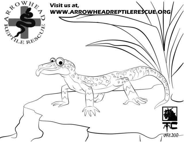 27 Brilliant Image Of Gecko Coloring Page Animals Animal
