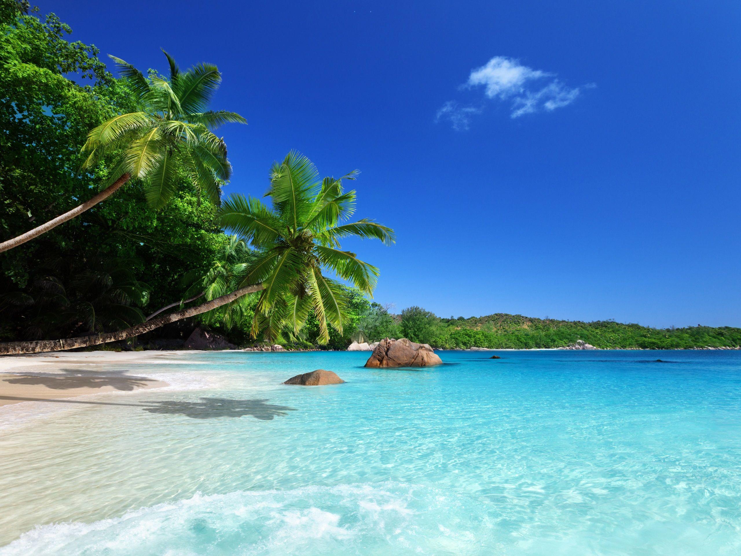 paradis tropical soleil plage cote