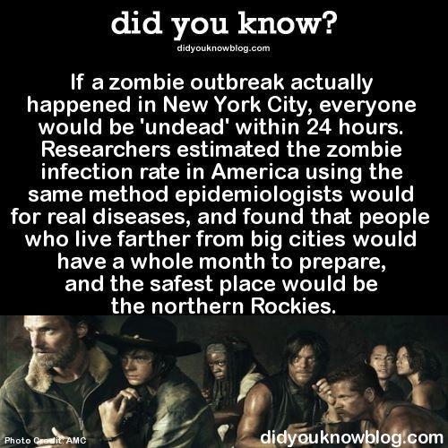 Zombie Outbreak Zombie Apocalypse Survival Zombie Apocalypse