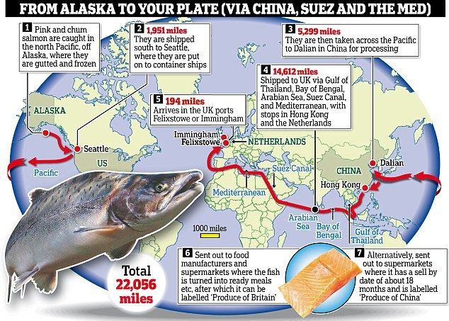 Salmon has come 22,000 miles from Alaska to your plate via China