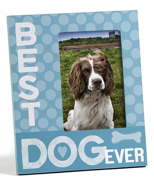 Look At This Best Dog Ever Picture Frame On Zulily Today