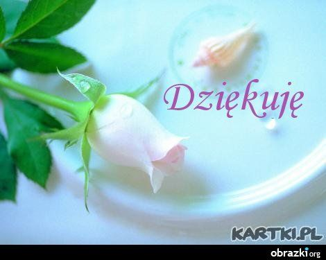 Dziekuje Za Piekne Zyczenia Kartki Pl Ulubiony Z Www Kartki Pl Flower Fragrance Rose Wallpaper Soft Pink