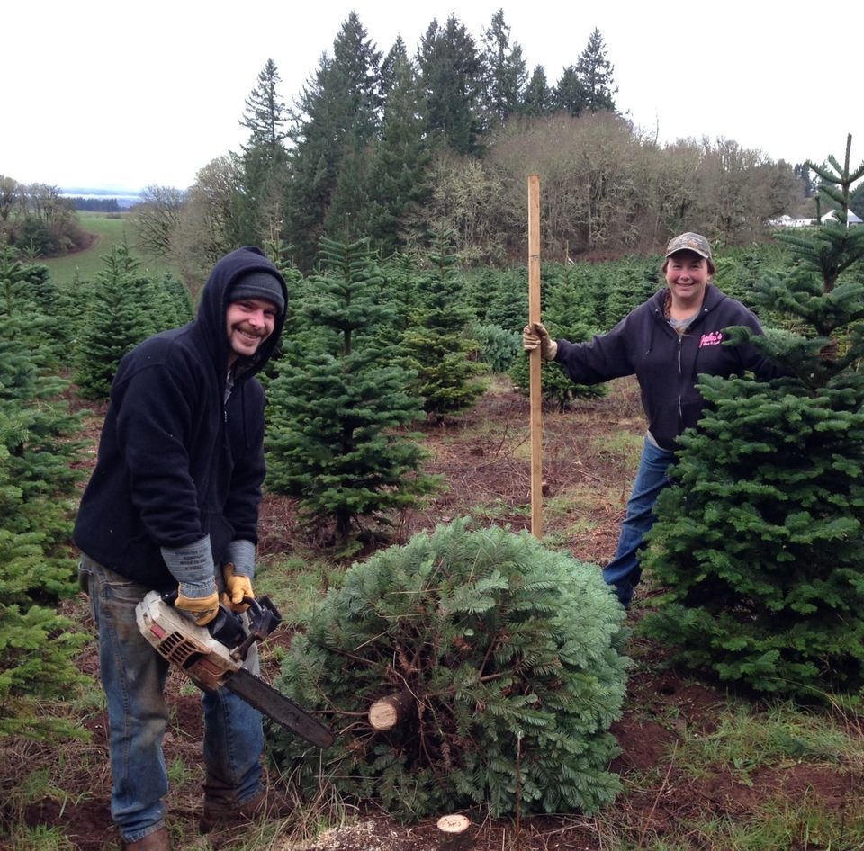 First Oregon Organic Christmas Trees Sold Commercially Find Success At New Seasons Christmas Trees And More Christmas Tree Farm Christmas Tree Christmas
