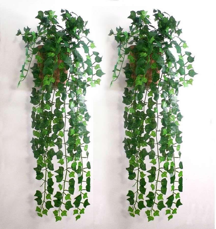 10 Easy To Grow Indoor Plants In India Artificial Hanging Plants Hanging Plants Artificial Flowers