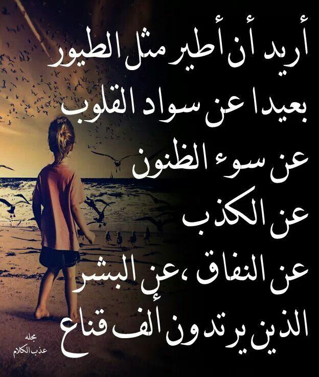 اريد ان اطير Really Good Quotes Wisdom Quotes Life Funny Arabic Quotes