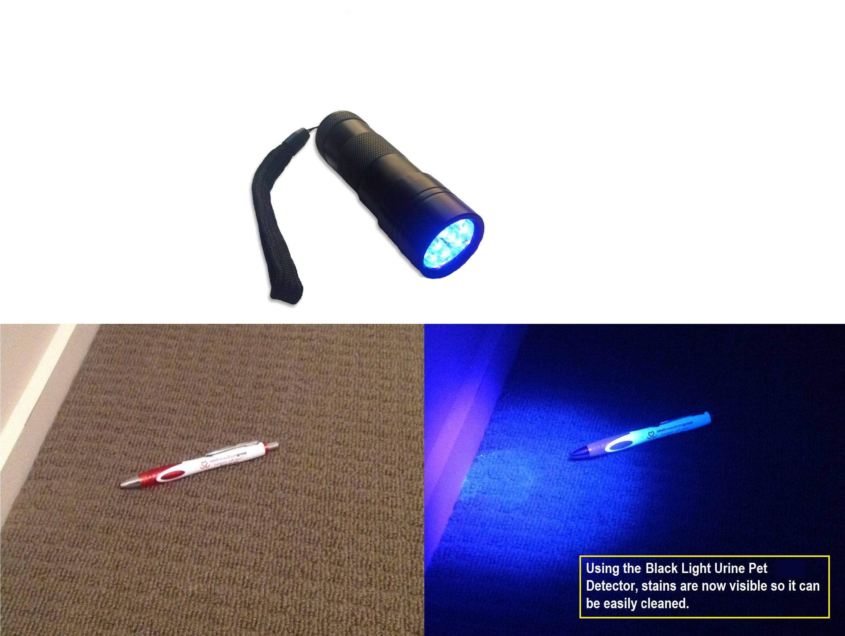 Uv Stain Detective Helps You Find Those Annoying Smelly Cat Dog Or Rodent Urine Stains It Is A Pow Dog Beds For Small Dogs Black Light Flashlight Black Light