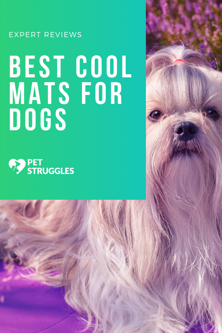Best Cool Mat For Dogs Dogs Dog Product Review Dog Love