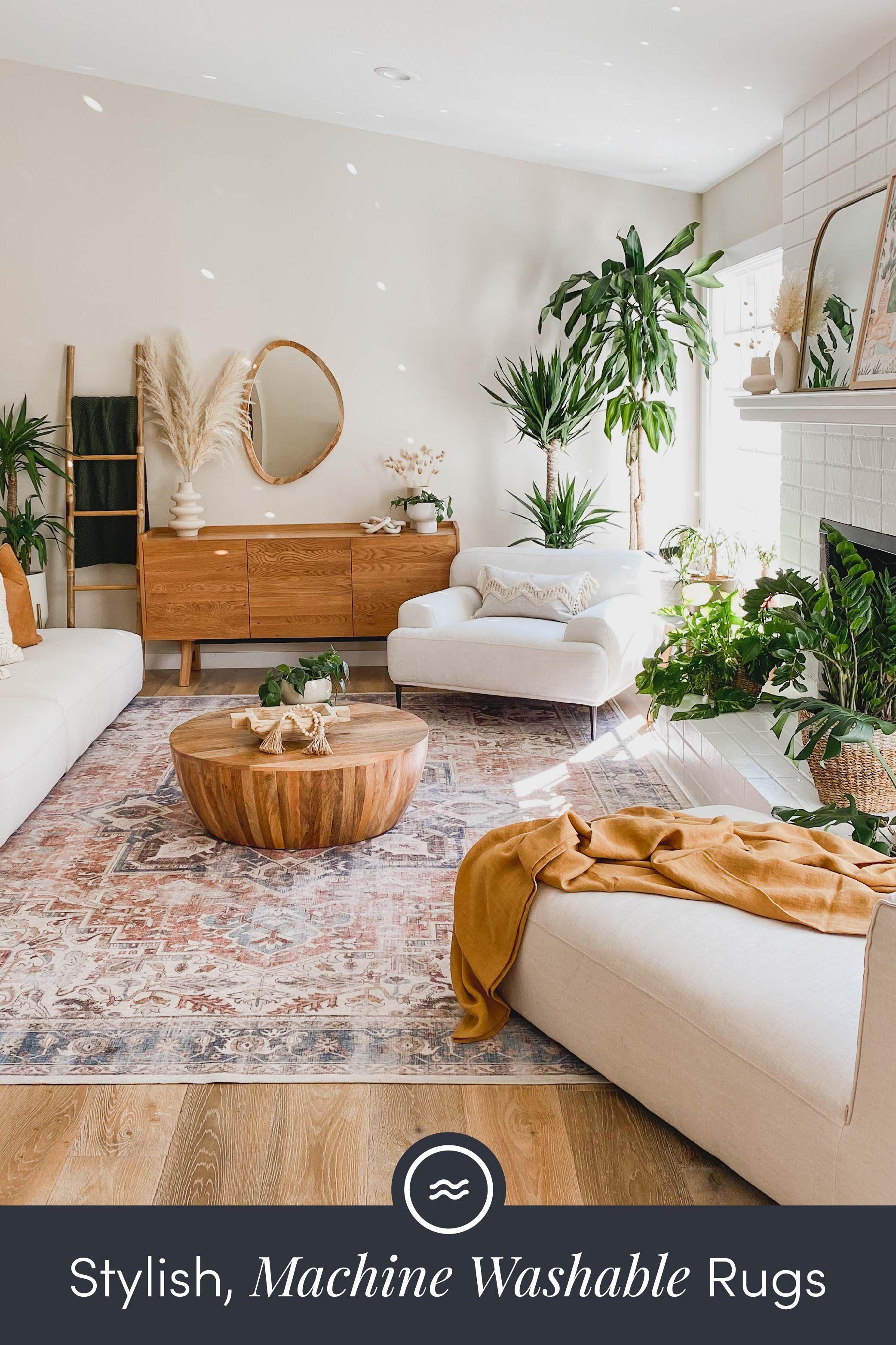Farmhouse Living Room Rugs