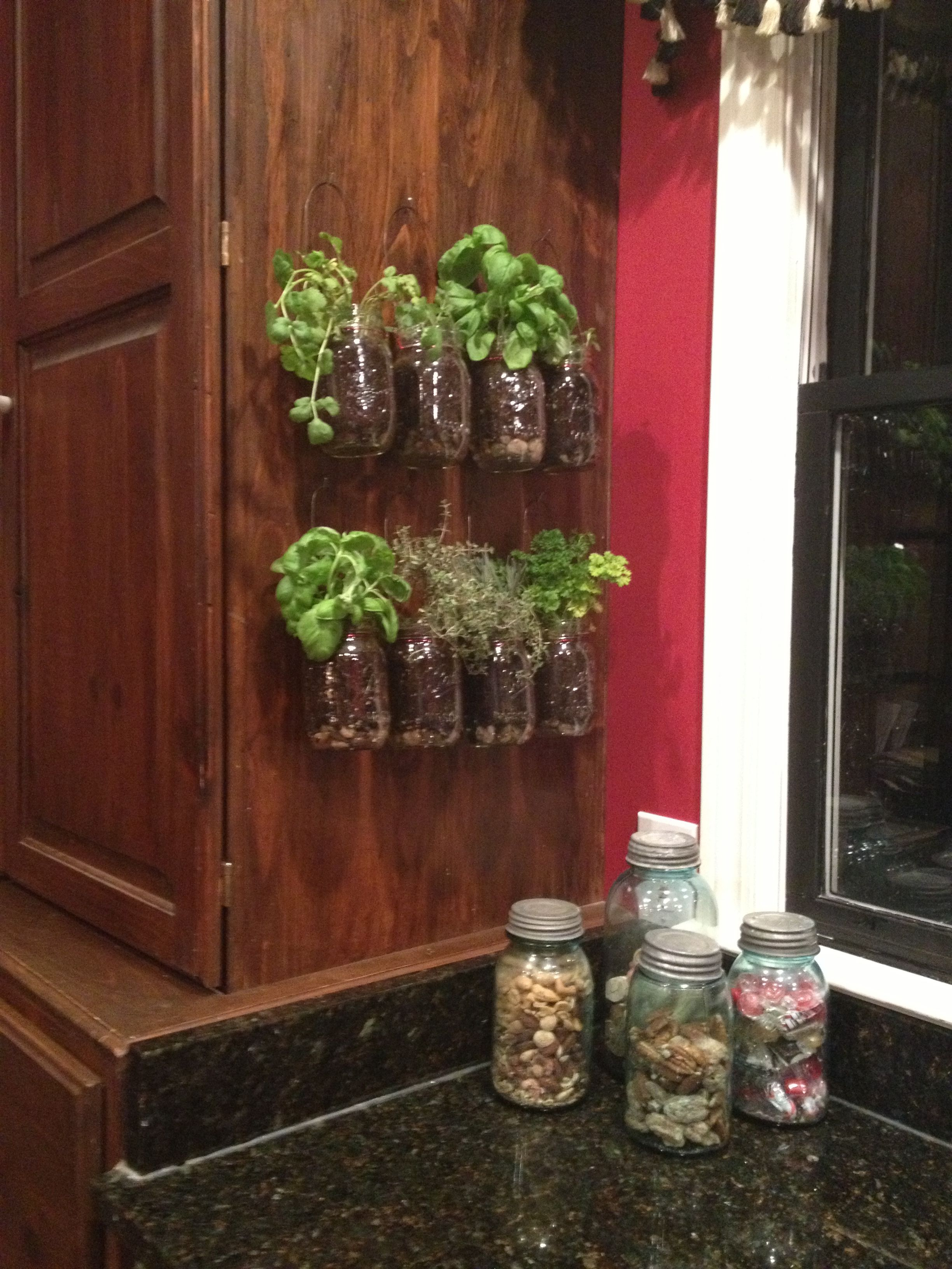 kitchen herb garden there s no place like home herb garden in kitchen kitchen herbs on outdoor kitchen herb garden id=76383