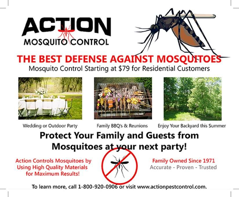 The Best Defense Against Mosquitoes (With images)   Pest ...