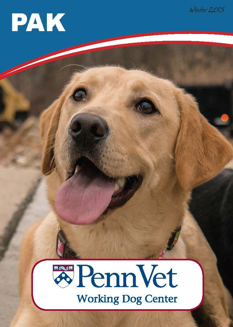 Meet Our Dogs Penn Vet Working Dog Center Working Dogs Dogs