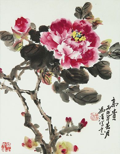 The Chinese Peony Has Always Been My Favorite Flower I Believe I
