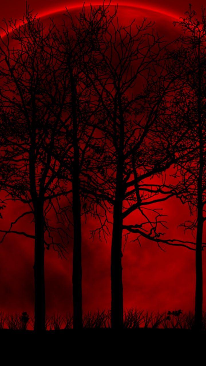 Favoritos Baixe papel de parede 720x1280 árvores, céu, Eclipse, Noite, Blood  VK57