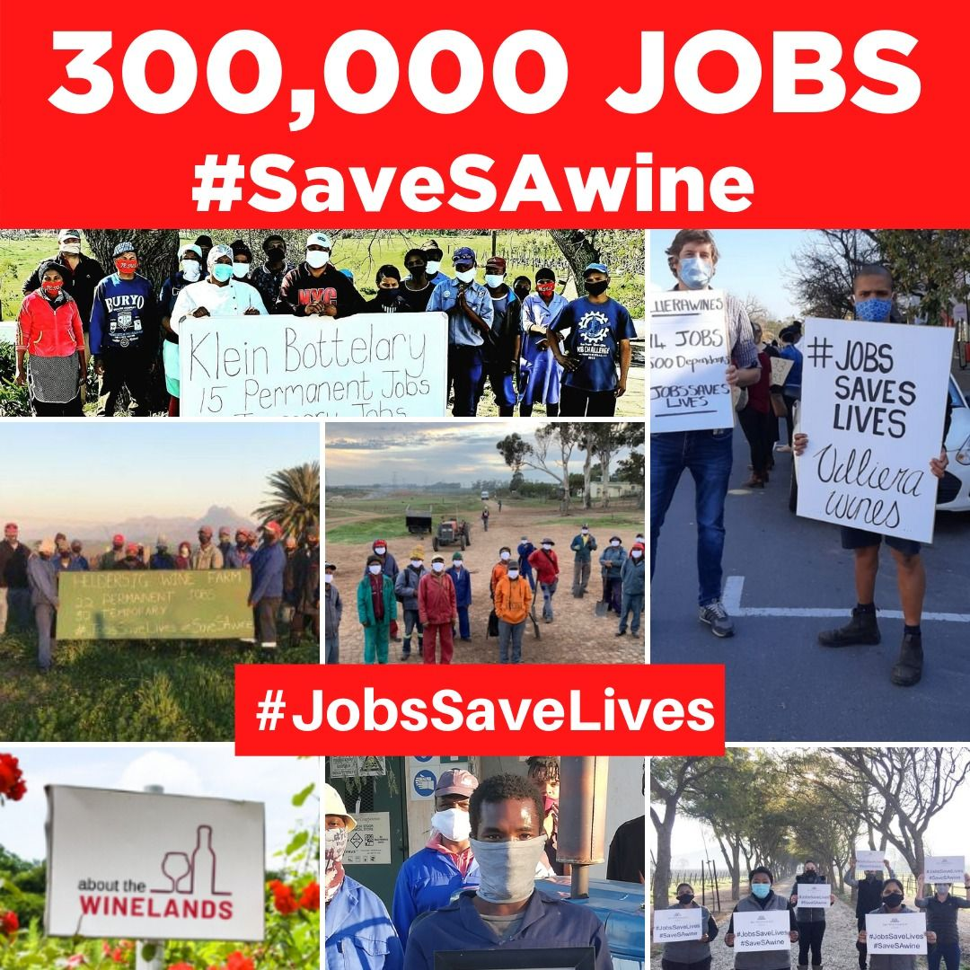 Join The Savesawine Campaign In 2020 Life Campaign Job