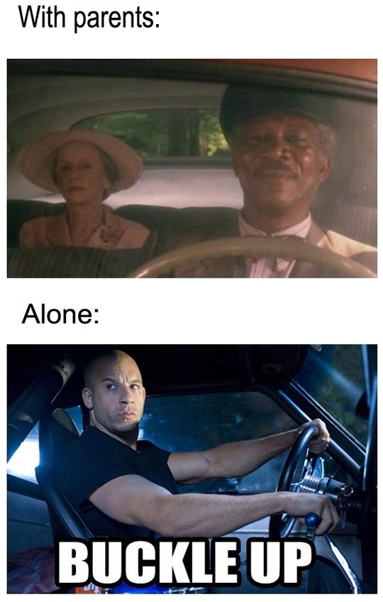 The Way I Drive Fast And Furious Memes Funny Memes Funny Meme Pictures