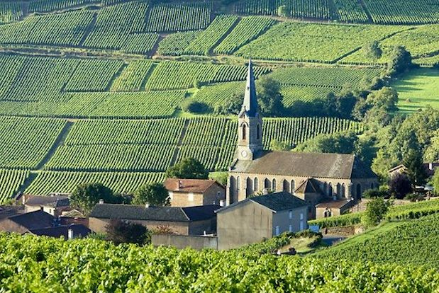 Chinese Investors In Burgundy: Keep A Low Profile