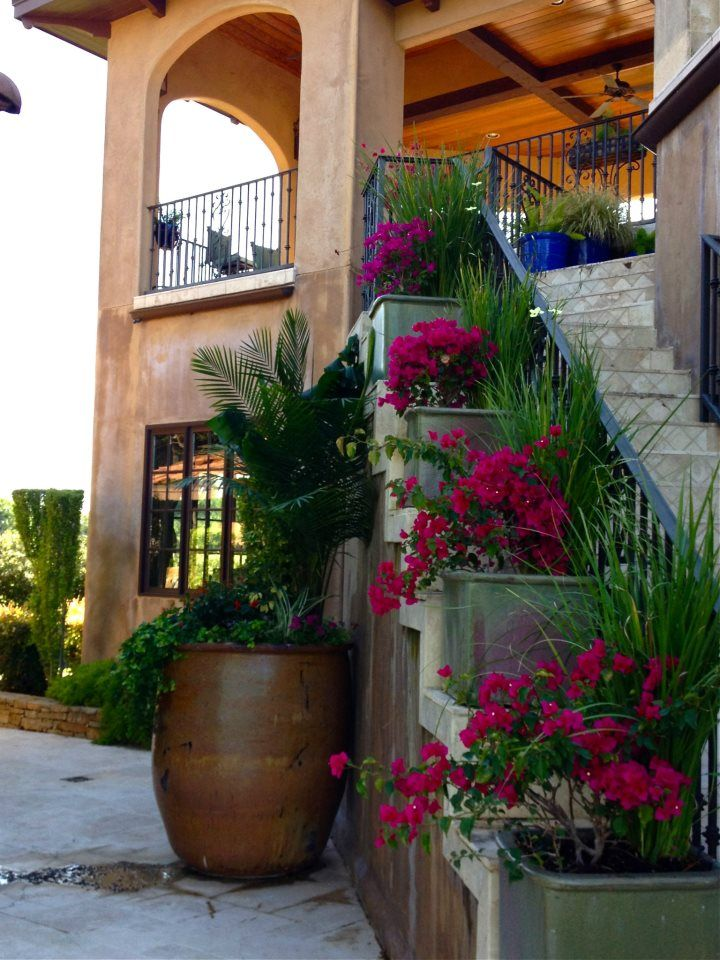 We turned an eye sore staircase into a lavish garden with a stair-stepped platform for containers.