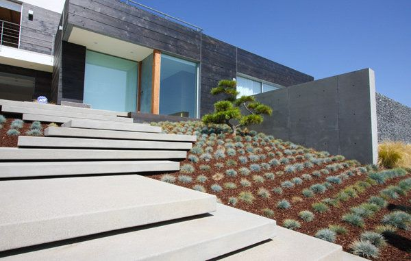 Floating steps with ornamental grasses landscape by for Contemporary landscape architecture