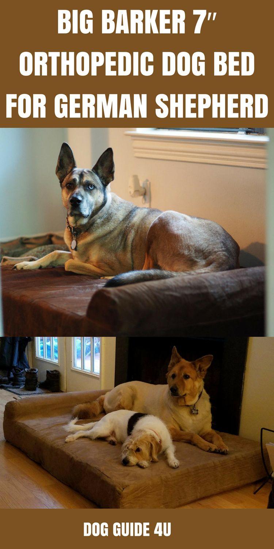 Big Barker 7″ Orthopedic Dog Bed for German Shepherd Dog bed