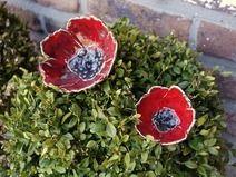 Keramik Mohn 2 poppies Blumen Garten Ton