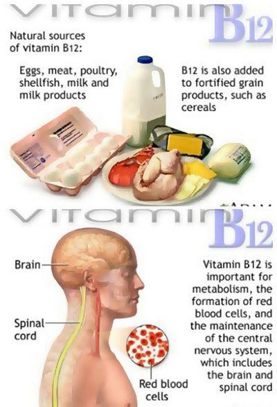 Top 10 Vitamin B12 Rich Food Sources Pinterest Vitamin B12