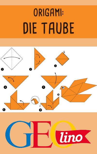Wir zeigen euch, wie ihr eine Taube aus Papier falten könnt. #origami #basteln #taube #bastelnmitpapier