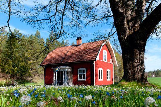 Fruhling In Schweden Zweden Huis Zweeds Huis Buitenontwerp