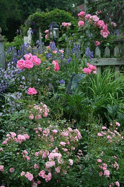 Roses along the fence rosebank garden ideas Pinterest Jardines - Jardines Hermosos