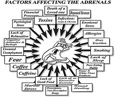 The top ten signs that you may have adrenal fatigue - Making You Aware