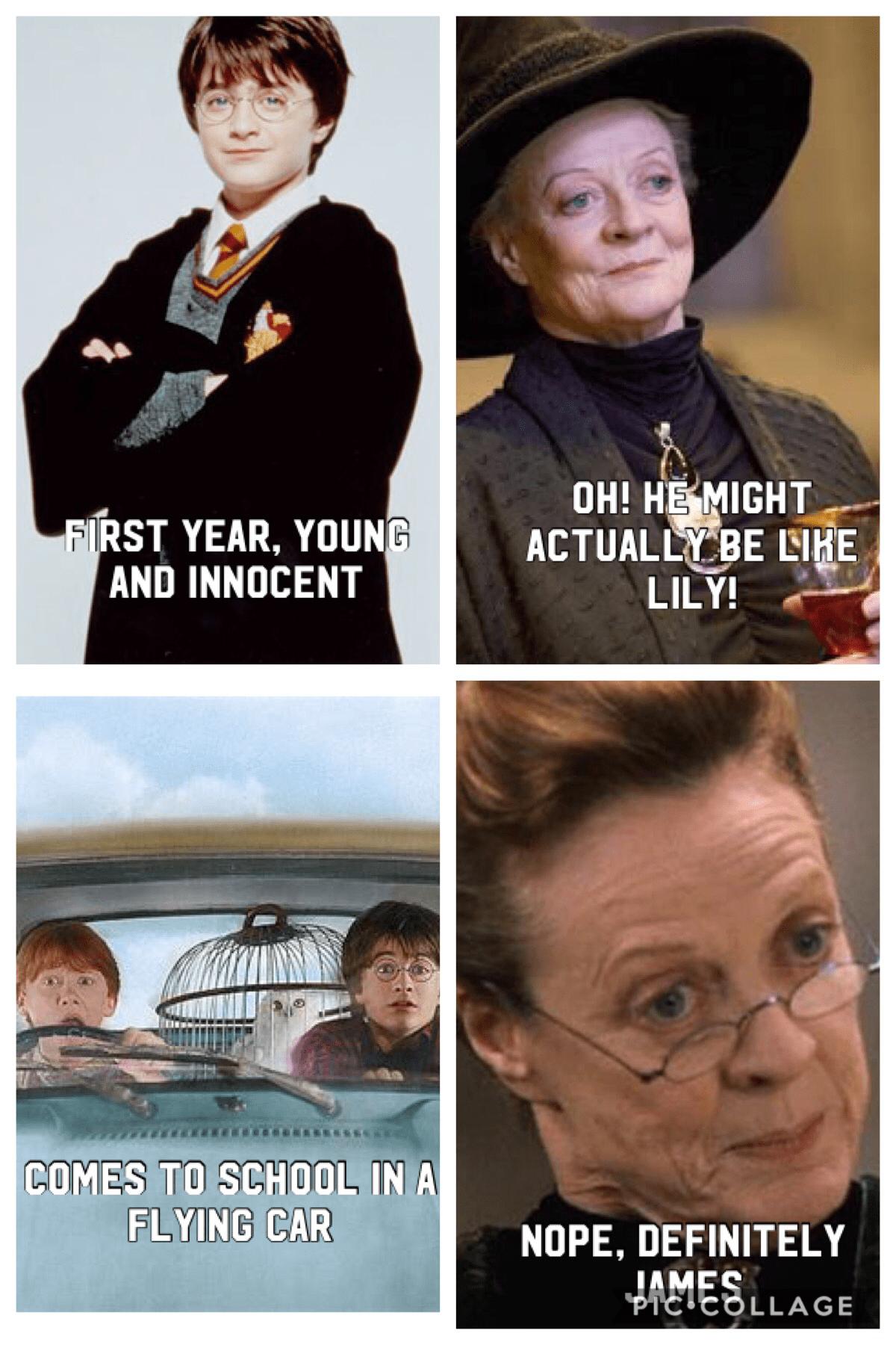 100 Harry Potter Memes That Are So Hilarious Harry Potter Memes Fetus Deletus