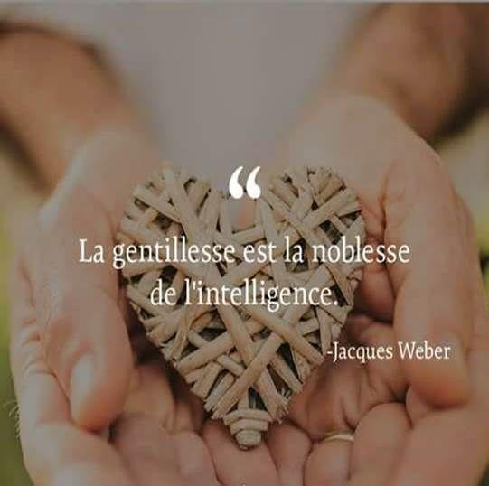 La Gentillesse Est La Noblesse De L Intelligence Jacques